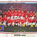 Alevin 02 a y b Temp 12-13